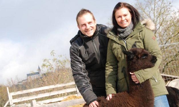 Flauschige Wolle und noch viel mehr
